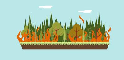 Puisi: Kebakaran Hutan Riau, Siapa Yang Kacau ?
