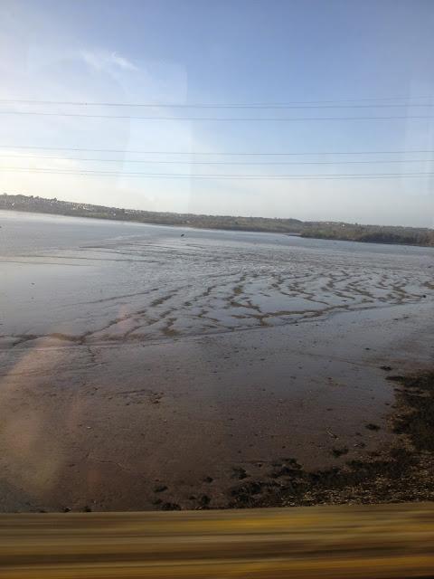 Tamar River Railway