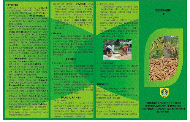 Agribisnis Padi Agribisnis Dan Hobi Flona Alam Tani Leafletagribisnispadifrontjpg