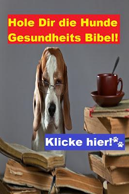 Hundegesundheit Bibel