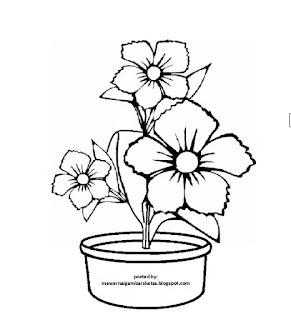 Gambar Flora Yang Mudah Di Tiru Untuk Anak Terlengkap