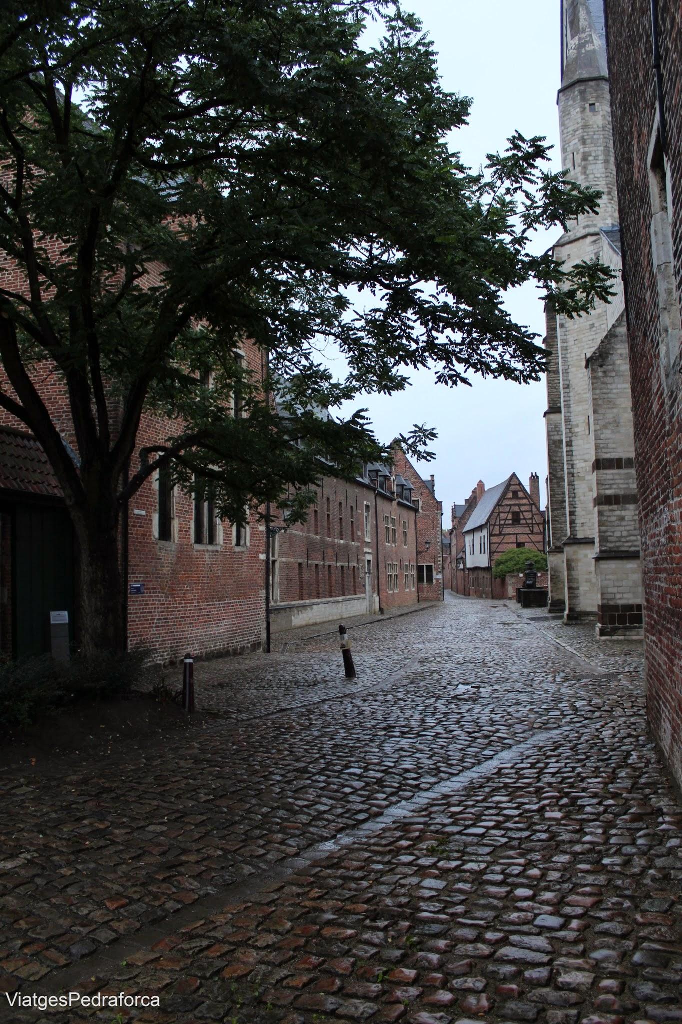Begijnhof de Lovaina, Leuven, Flandes, Belgica, Beguinatge