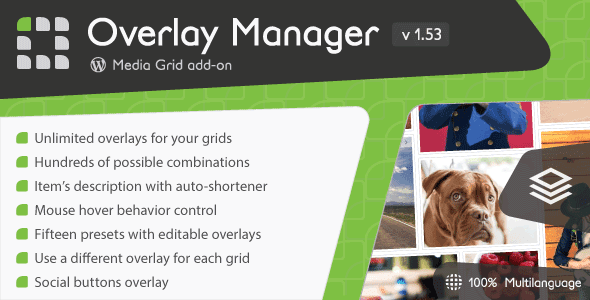Media Grid – Overlay Manager add-on v1.53 Nulled