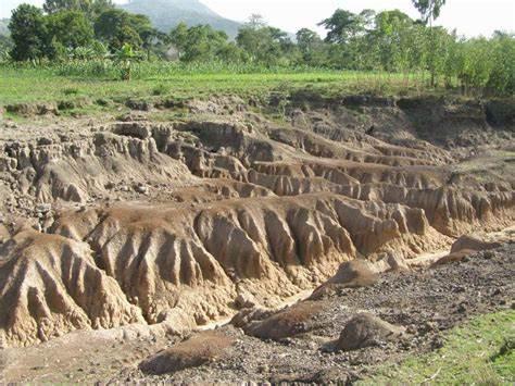 भू-क्षरण,मृदा अपरदन(Soil Erosion) क्या है?  परिभाषा, कारण, परिणाम।
