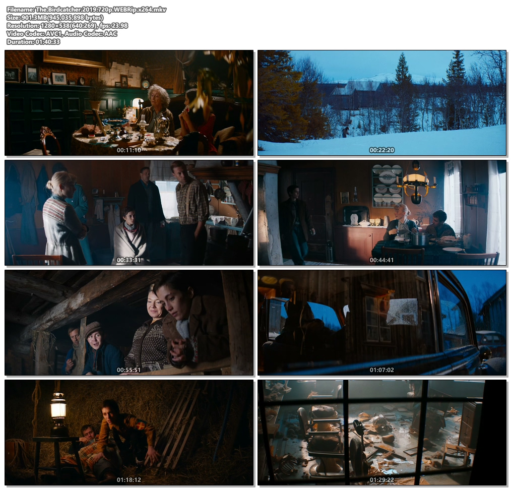 The Birdcatcher 2019 720p WEBRip x264 | 480p 300MB | 100MB HEVC Screenshot