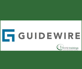 Guidewire training