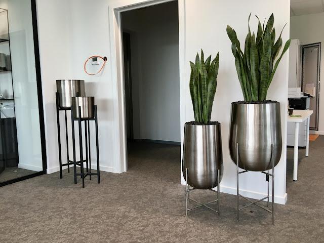 Grote kunstplanten kopen voor buiten in Limburg Gent Brussel