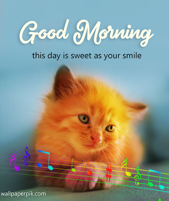 Original Good Morning Images For Lovely Wife Hd Greetings