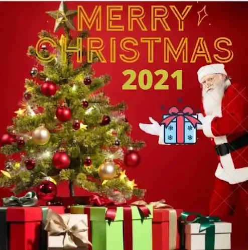 Christmas 2021: Best Way to Celebrate the Festival of Lights