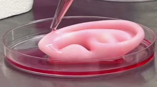 "Scientists 3D Print Cartilage Using an ""ink"" Composed of Human Cells"