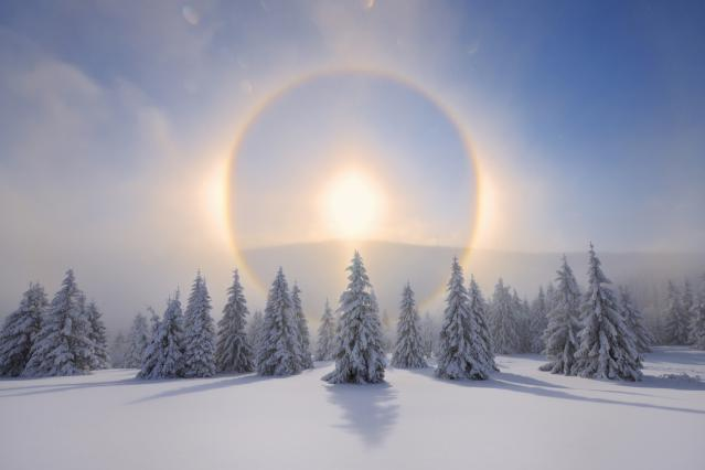 Have a Blessed Winter Solstice - days are getting longer now!