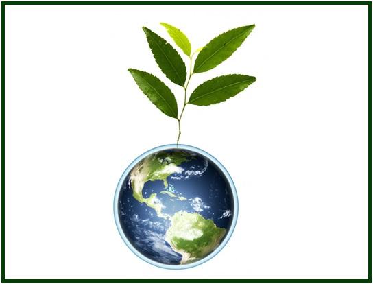 The Tree of Universal Brotherhood
