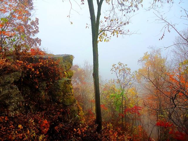 ảnh sắc màu mùa thu đẹp
