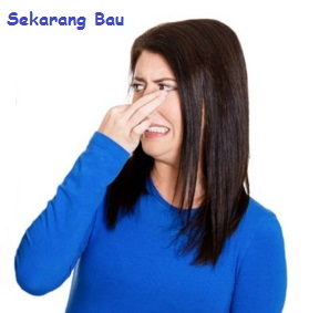gambar wanita tutup hidung karena bau kentut