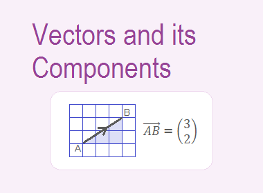 Vectors and its Components
