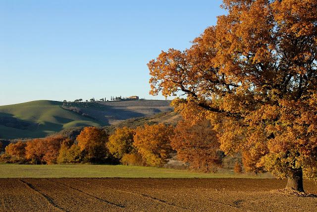 colline bolognesi-paesaggio-Bologna