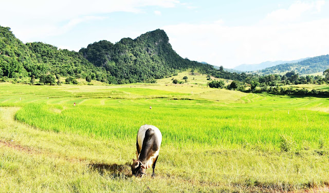 Trekking Kalaw Inle