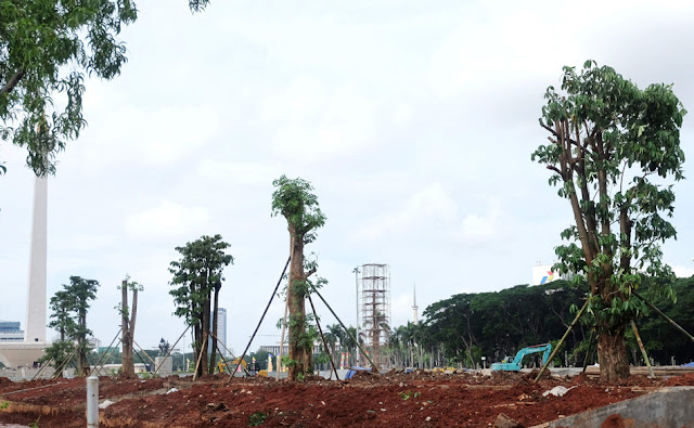 DKI Tebang 191 Pohon di Monas, Sekda: Diganti 573 Pohon