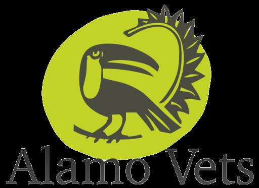 Alamo Vets