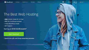 How to buy hosting with a free domain from Bluehost for your blog?