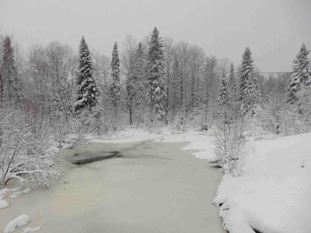 Beaver Pond Trail -- Winter