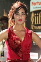 Videesha in Spicy Floor Length Red Sleeveless Gown at IIFA Utsavam Awards 2017  Day 2  Exclusive 20.JPG