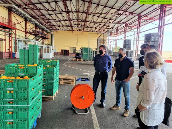 Comienzan las obras de reorganización de la Central Hortofrutícola