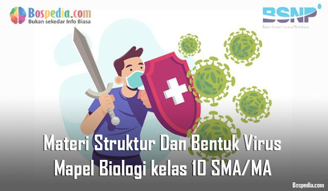 Materi Struktur Dan Bentuk Virus Mapel Biologi kelas 10 SMA/MA