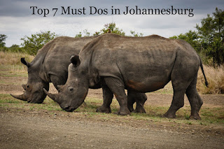 Top 7 Must Dos in Johannesburg