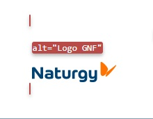 "logo de naturgy con texto alternativo ""logo GNF"""