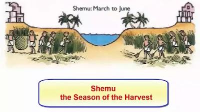 Ancient Egyptian Farming Shemu season