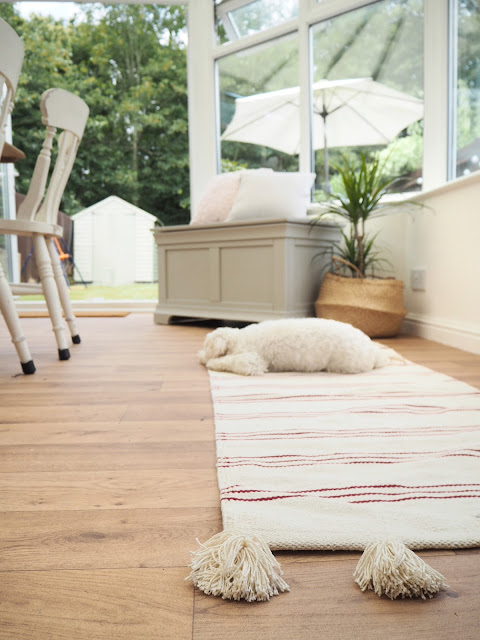 Keeping your home clean, tidy and stylish with pets featuring the best cleaning tips, how to get rid of pet hair and odours, and why pet products don't need to be ugly