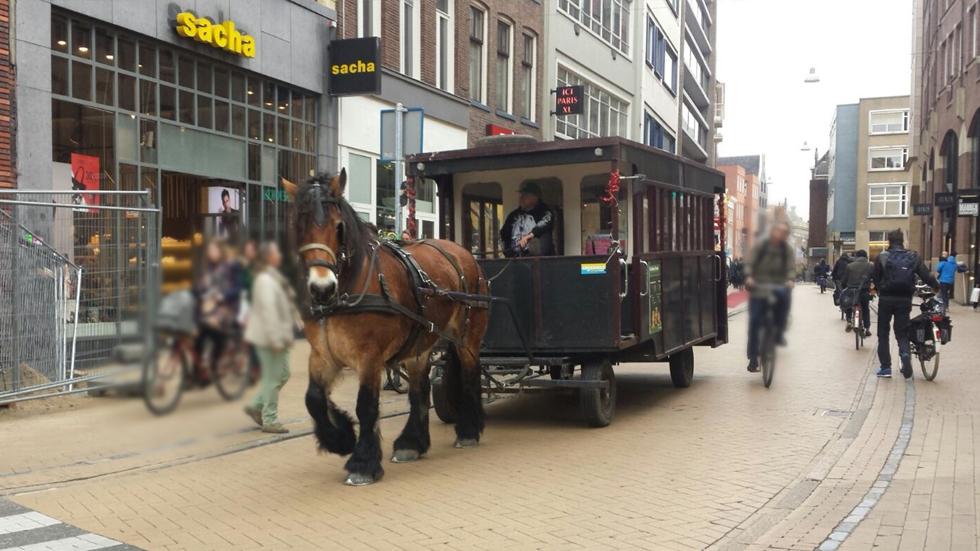 Guldenstraat - Groningen