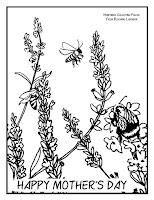 https://www.pelindabalavender.com/v/vspfiles/assets/images/Lavender-Bee-Coloring-Page.jpg