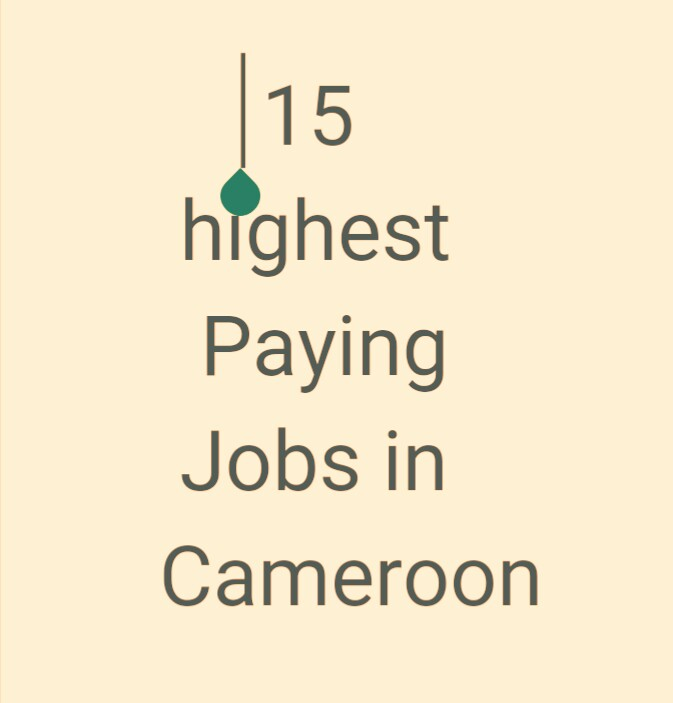 15 highest paying jobs in Cameroon in 2019