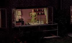 ver La ventana indiscreta (1954) online