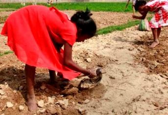 Foto de niñas trabajando sin zapatos