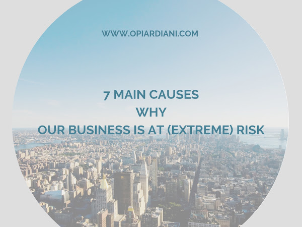 Seven Main Causes Why Our Business is at (Extreme) Risk