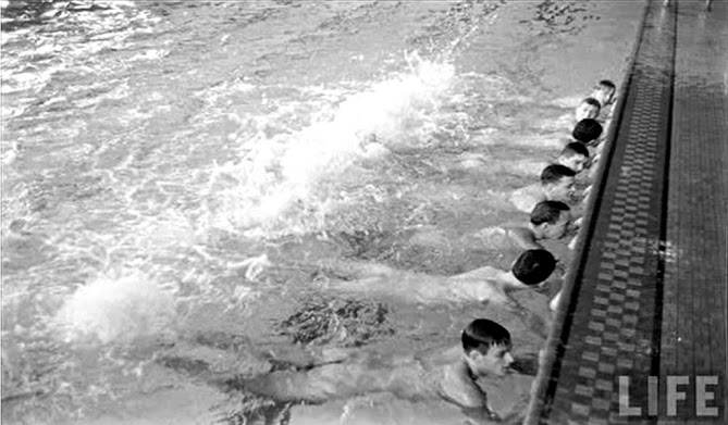 Marshall junior high school janesville wi nude swimming The Digital Research Library Of Illinois History Journal The Origins Of Nude Swimming In Illinois Public Schools And Community Pools