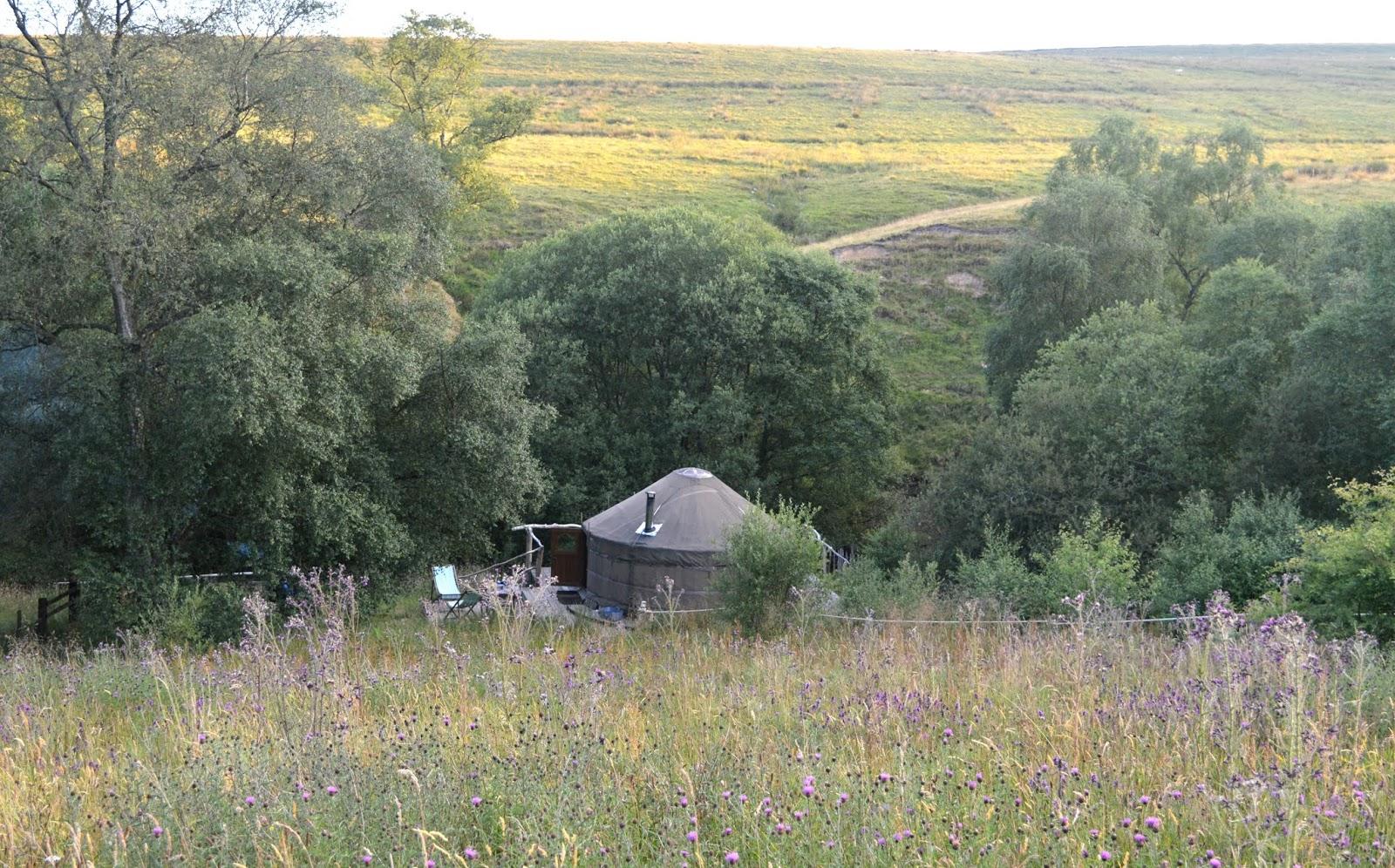 Wild Northumbrian Campsite
