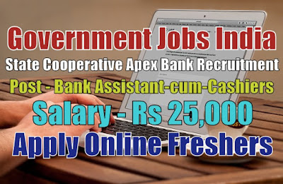 State Cooperative Apex Bank Recruitment 2020
