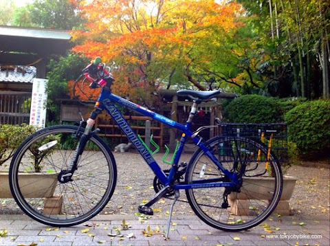 How to Turn any Mountain Bike into a Commuter Bike