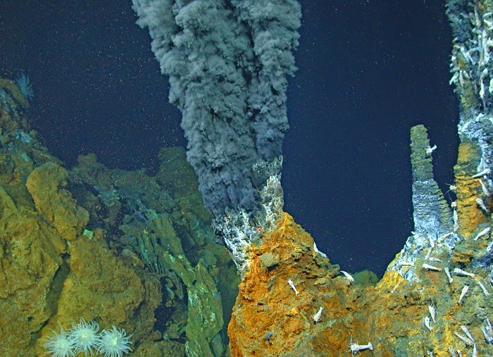 Hydrothermal vents and its organisms