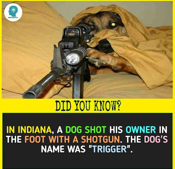 10 interesting facts you must know.