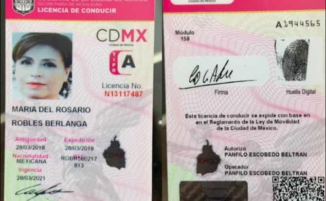 identificación, credencial,