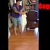 Βρήκε έναν ανεπιθύμητο επισκέπτη μέσα στο σπίτι της, όταν δείτε τι ήταν θα σοκαριστείτε! (video)