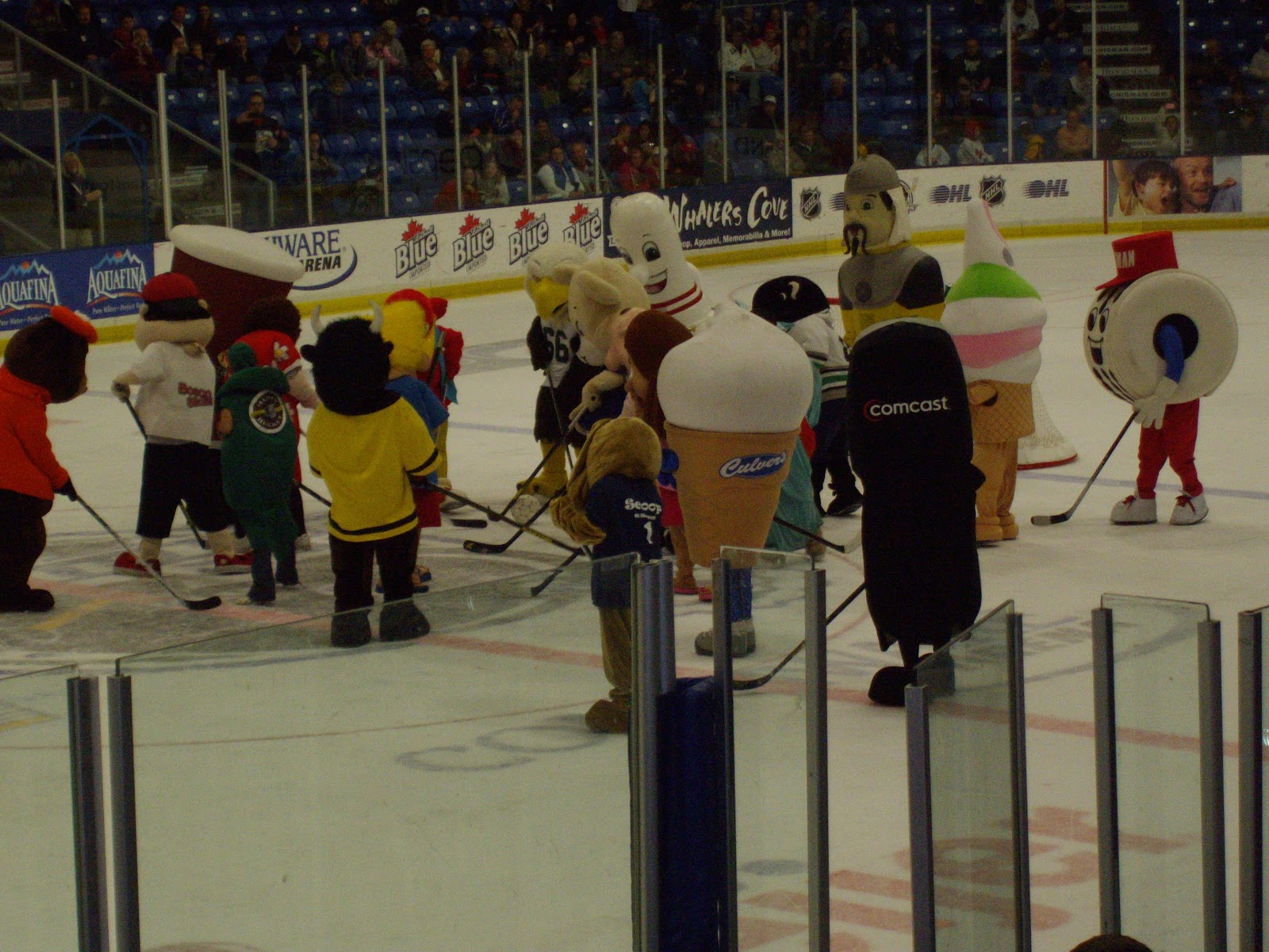 Mitten State Sports Report Mascot Hockey Game Photo Album