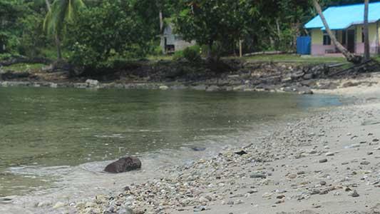 Melanau Timur Pulau Lemukutan Kabupaten Bengkayang
