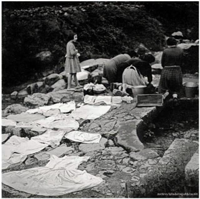 lavandera-pedro-bernardo