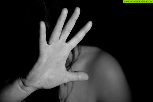 Las instituciones públicas de La Palma celebran una jornada de coordinación en materia de violencia de género